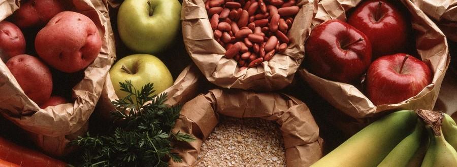 fibras-fisális-nutrição